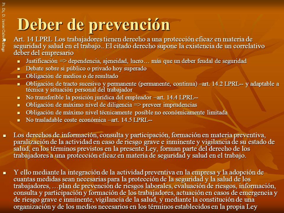Pr. Dr, D. Javier Calvo Gallego