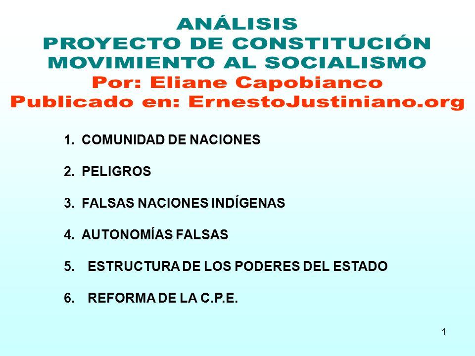 PROYECTO DE CONSTITUCIÓN MOVIMIENTO AL SOCIALISMO