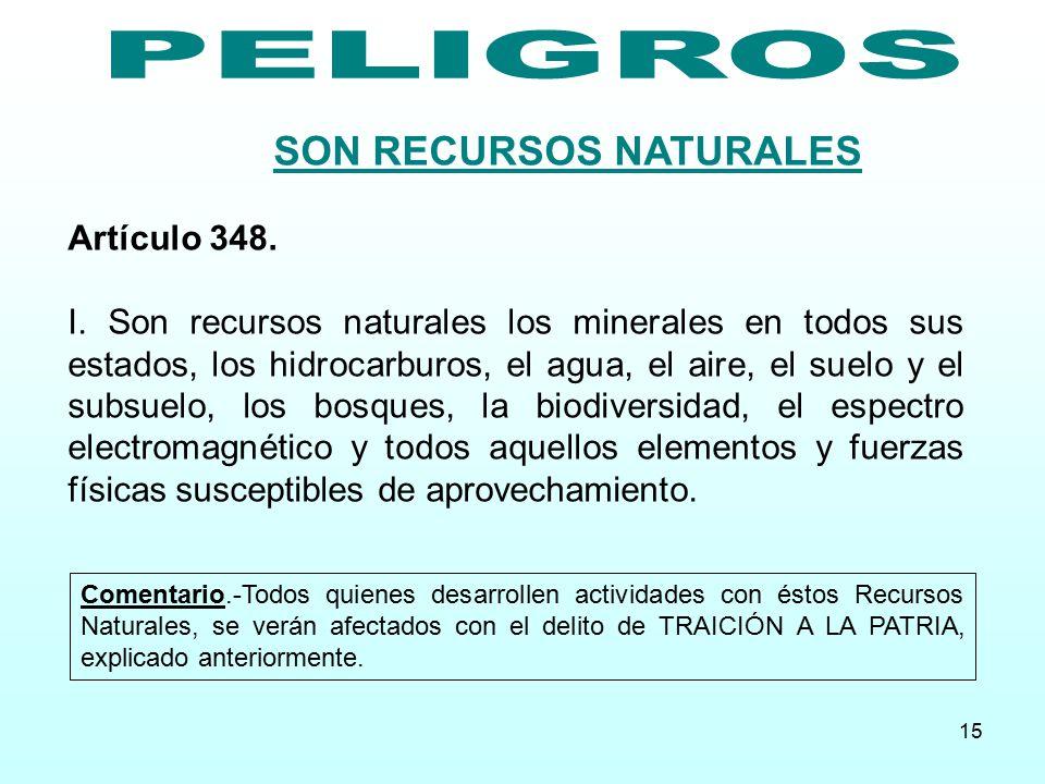 SON RECURSOS NATURALES