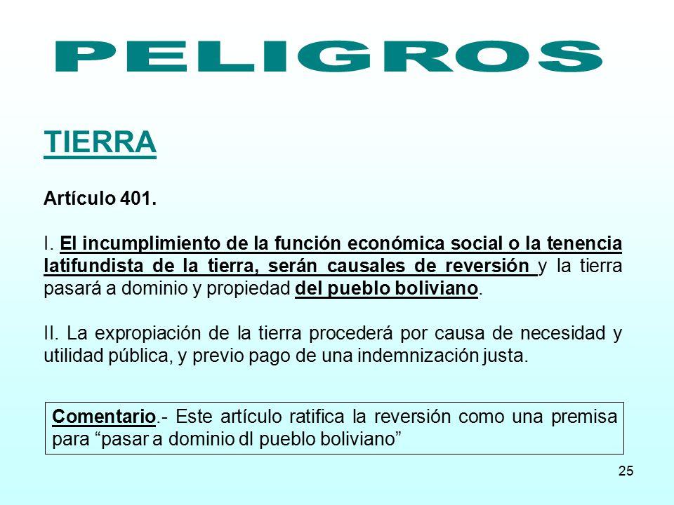 TIERRA PELIGROS Artículo 401.