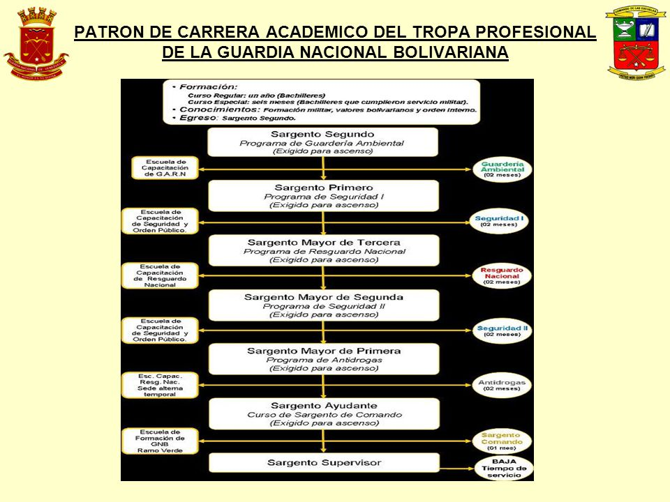 PATRON DE CARRERA ACADEMICO DEL TROPA PROFESIONAL DE LA GUARDIA NACIONAL BOLIVARIANA