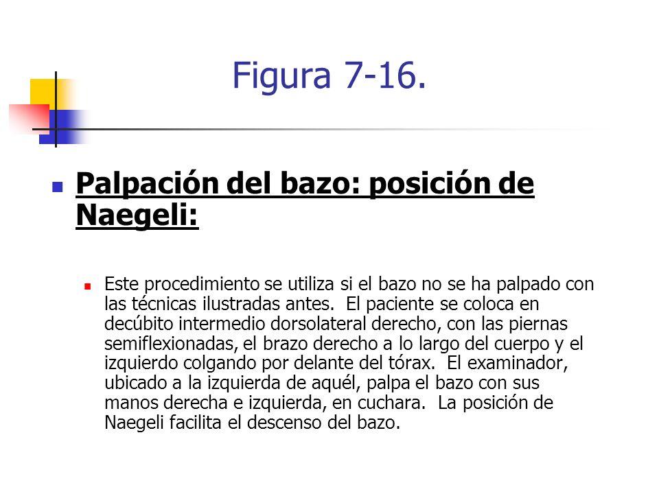 Figura 7-16. Palpación del bazo: posición de Naegeli: