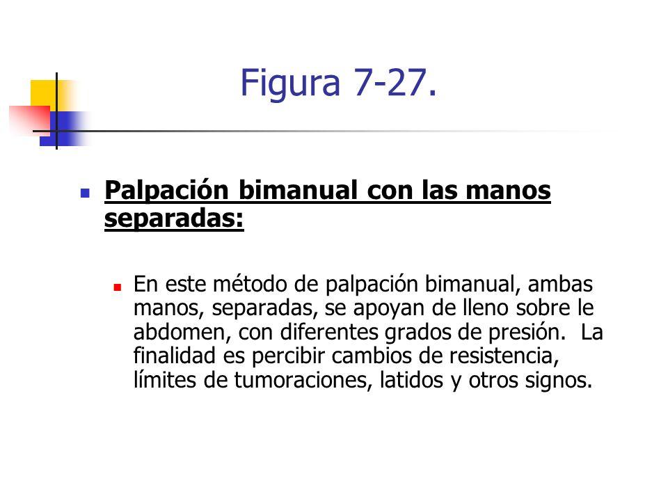 Figura 7-27. Palpación bimanual con las manos separadas: