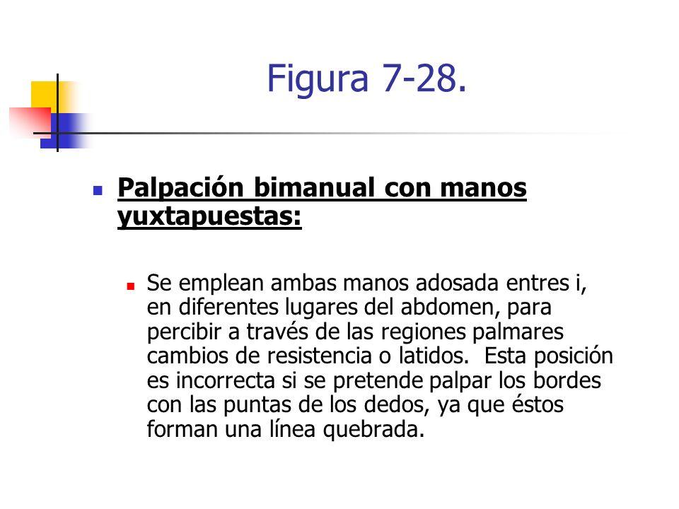Figura 7-28. Palpación bimanual con manos yuxtapuestas: