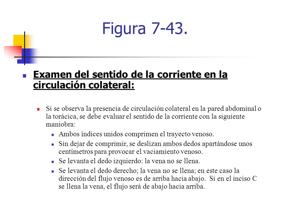 Figura 7-43. Examen del sentido de la corriente en la circulación colateral: