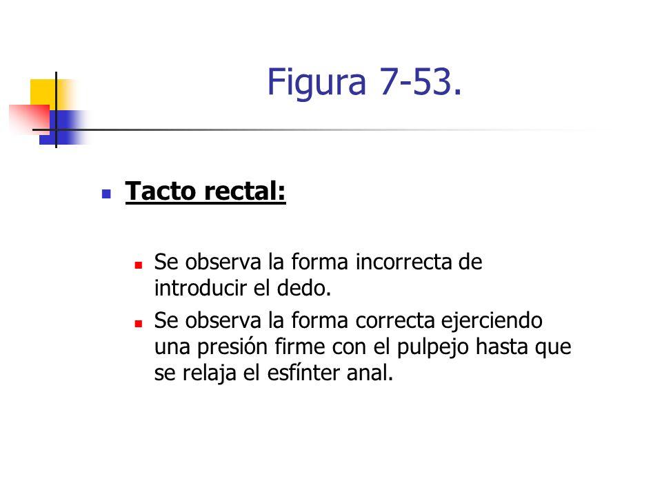 Figura 7-53. Tacto rectal: Se observa la forma incorrecta de introducir el dedo.