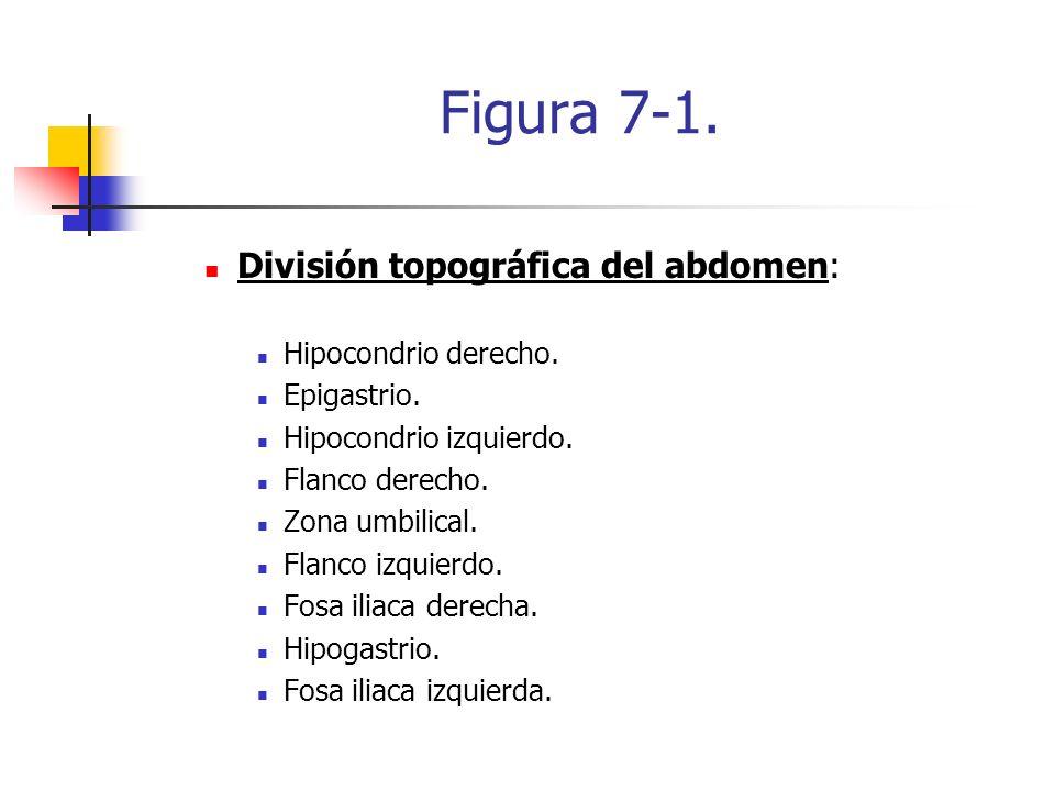 Figura 7-1. División topográfica del abdomen: Hipocondrio derecho.
