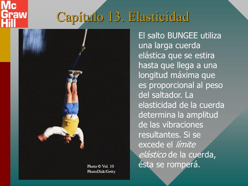 Capítulo 13. Elasticidad