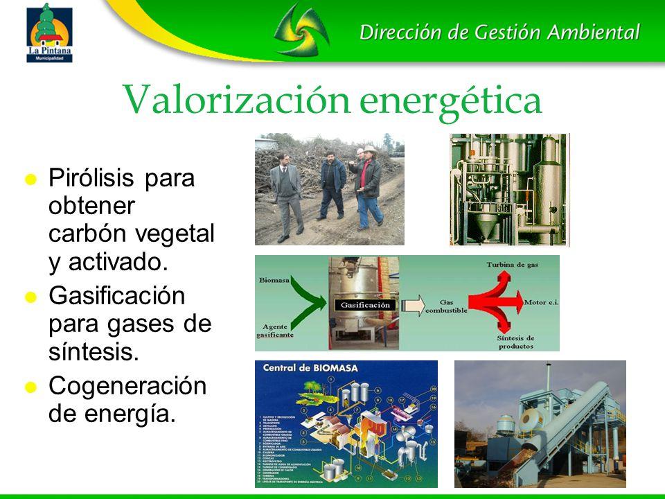 Valorización energética