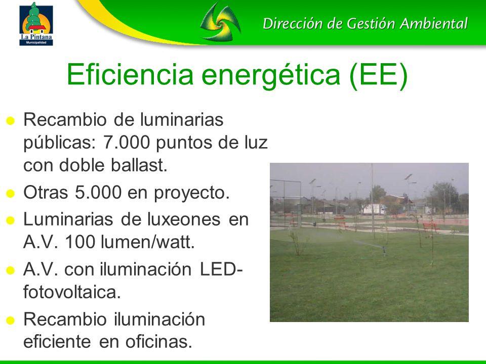 Eficiencia energética (EE)