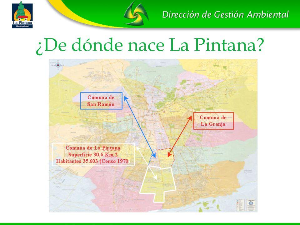 ¿De dónde nace La Pintana