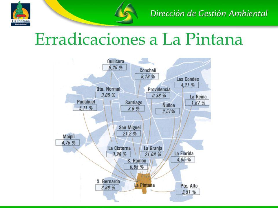 Erradicaciones a La Pintana