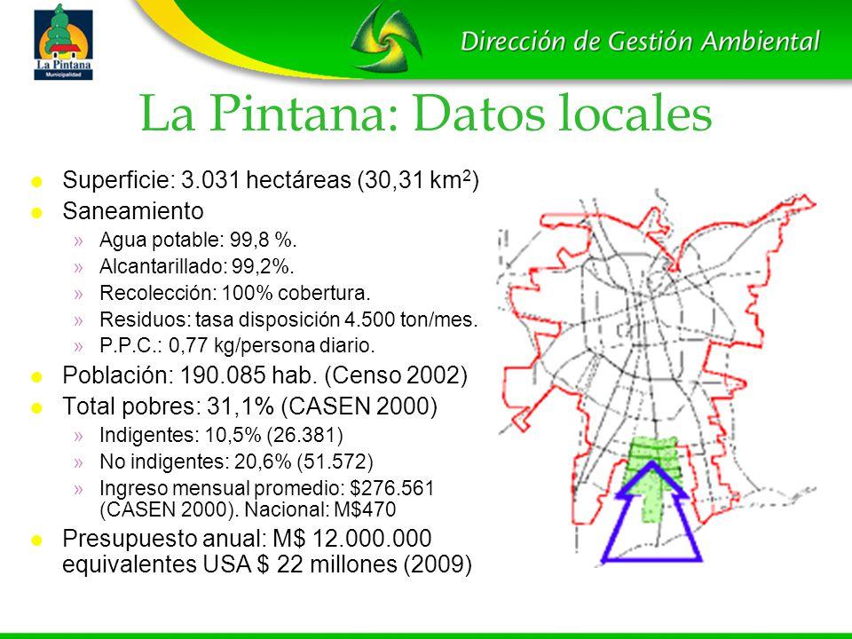 La Pintana: Datos locales