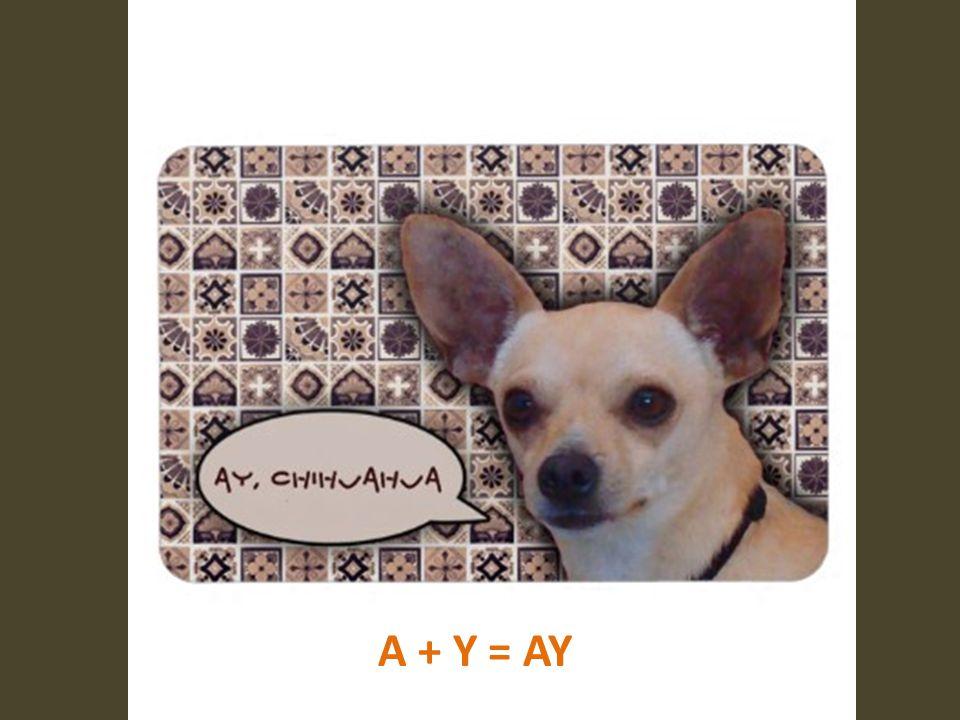 A + Y = AY
