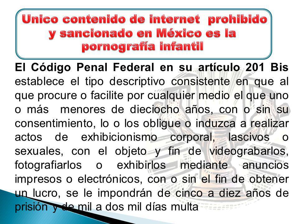 Unico contenido de internet prohibido y sancionado en México es la pornografía infantil