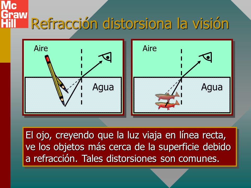 Refracción distorsiona la visión