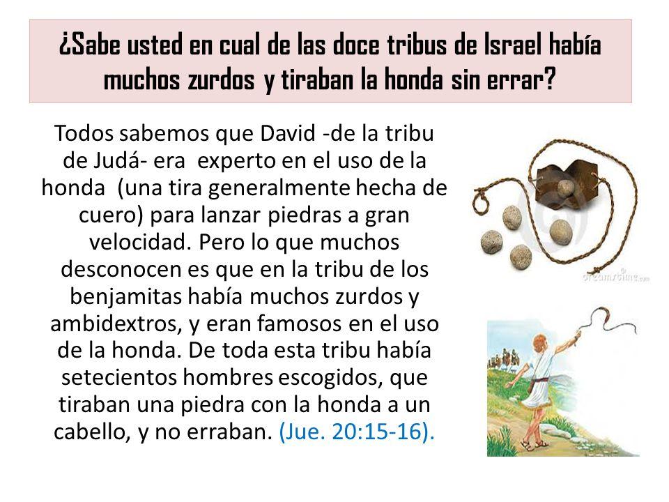 ¿Sabe usted en cual de las doce tribus de Israel había muchos zurdos y tiraban la honda sin errar