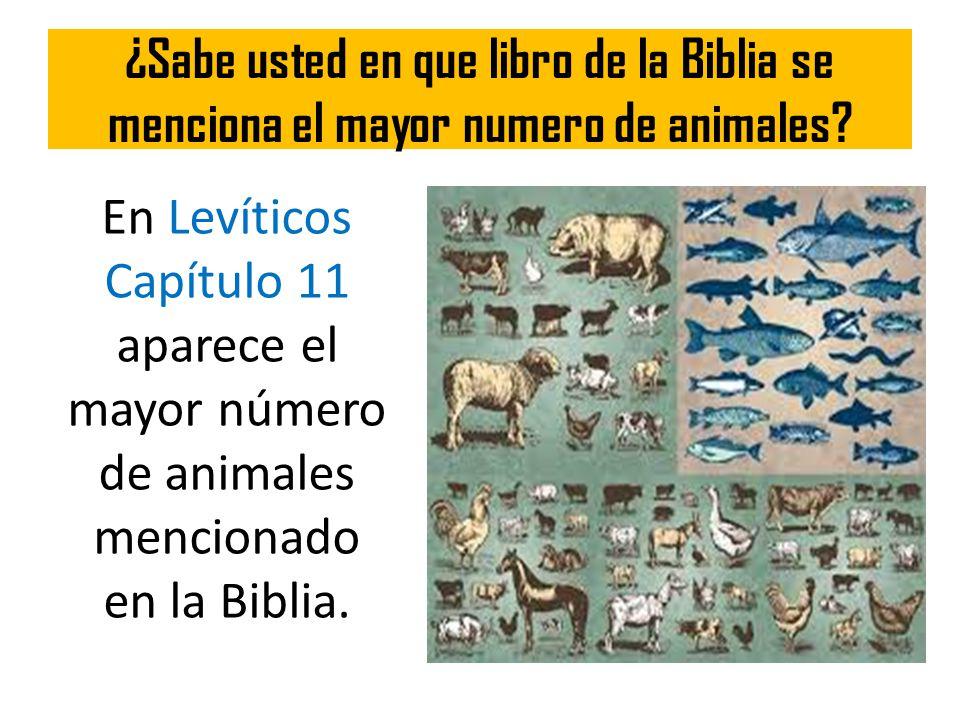 ¿Sabe usted en que libro de la Biblia se menciona el mayor numero de animales