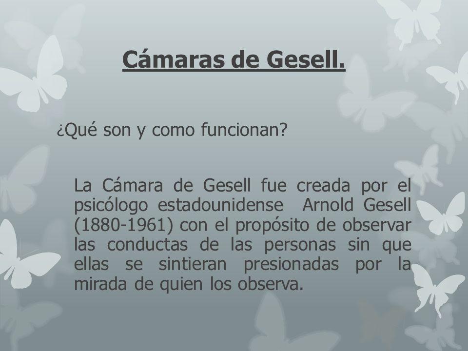 Cámaras de Gesell. ¿Qué son y como funcionan