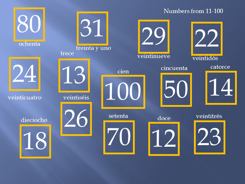 Numbers from 11-100 80. 31. 29. 22. ochenta. treinta y uno. trece. veintinueve. veintidós. 24.
