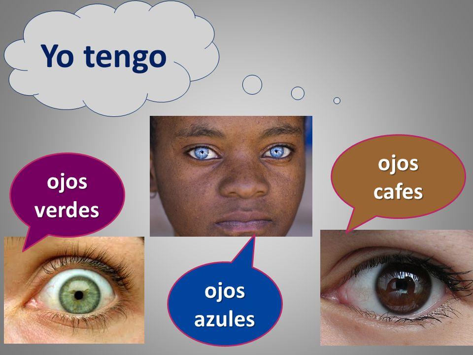 Yo tengo ojos cafes ojos verdes ojos azules