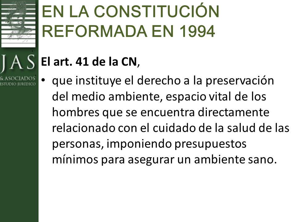 EN LA CONSTITUCIÓN REFORMADA EN 1994