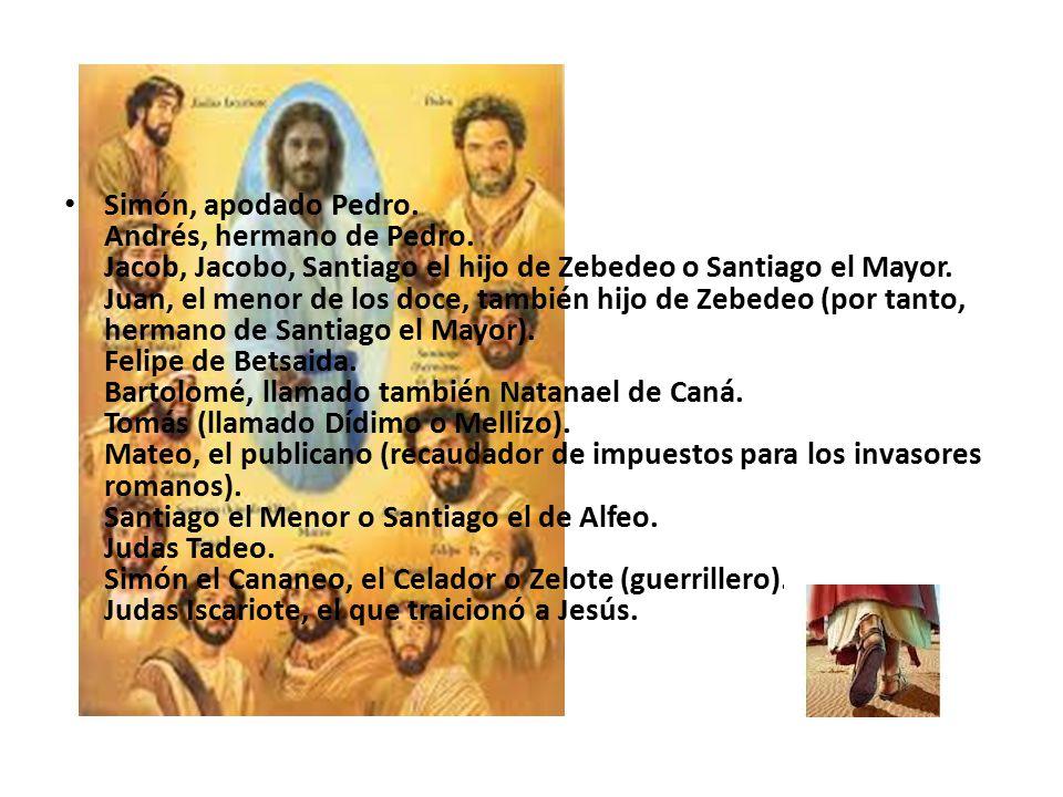 Simón, apodado Pedro. Andrés, hermano de Pedro