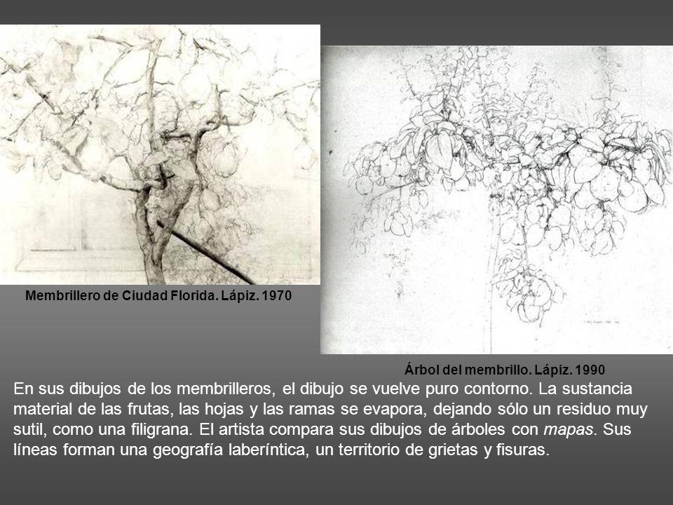Árbol del membrillo. Lápiz. 1990