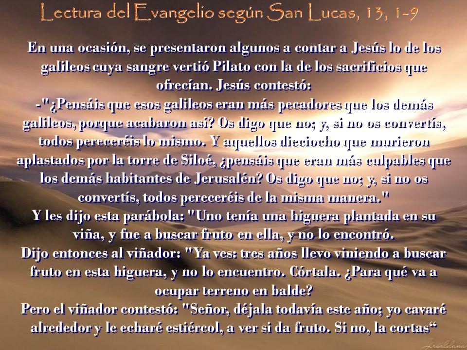 Lectura del Evangelio según San Lucas, 13, 1-9