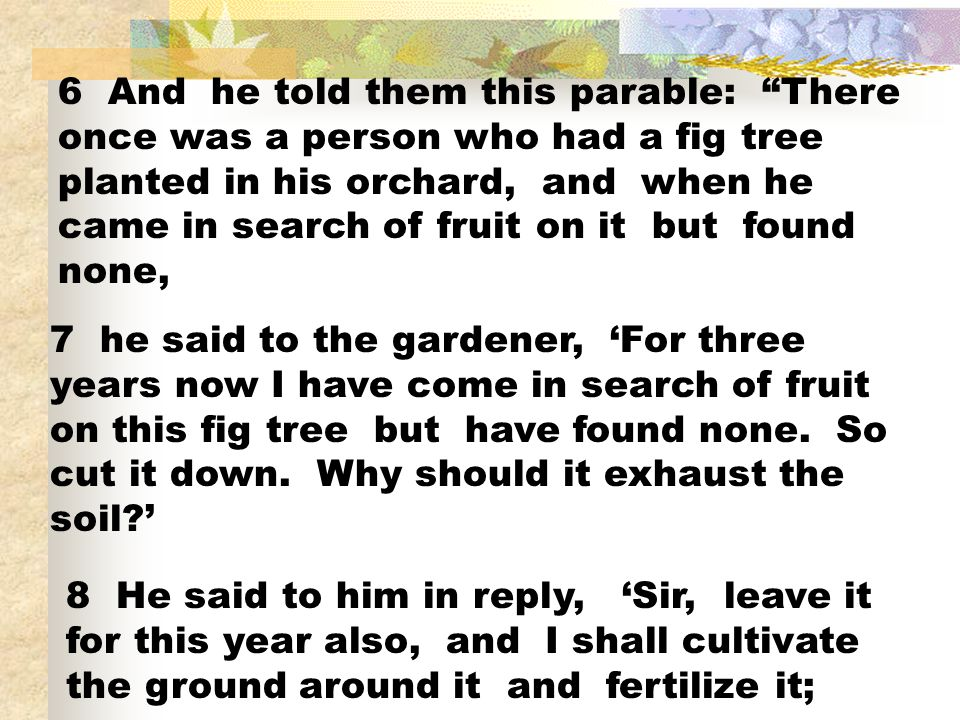 6 And he told them this parable: There once was a person who had a fig tree planted in his orchard, and when he came in search of fruit on it but found none,