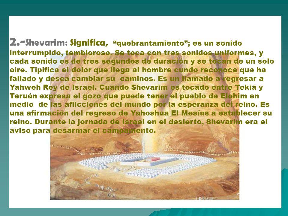 2.-Shevarim: Significa, quebrantamiento ; es un sonido interrumpido, tembloroso.