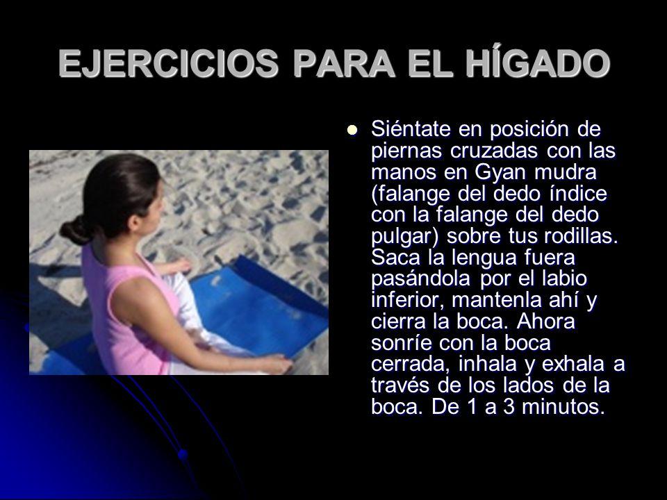 EJERCICIOS PARA EL HÍGADO