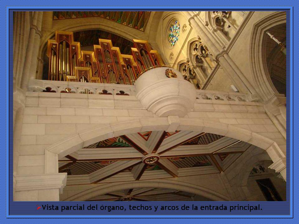 Vista parcial del órgano, techos y arcos de la entrada principal.