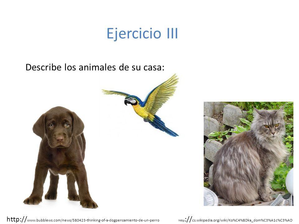 Ejercicio III Describe los animales de su casa: