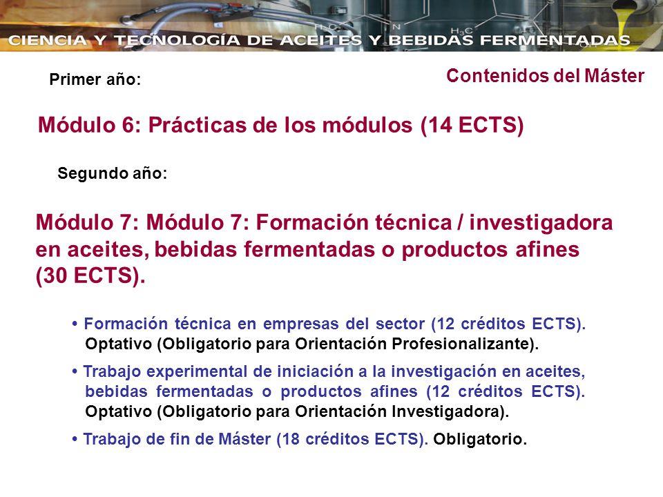 Módulo 6: Prácticas de los módulos (14 ECTS)