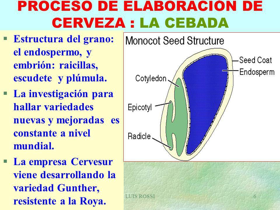PROCESO DE ELABORACIÓN DE CERVEZA : LA CEBADA