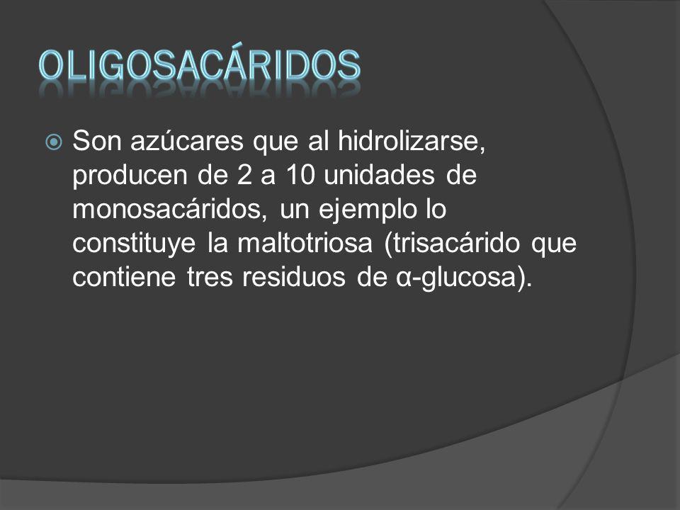 OLIGOSACÁRIDOS