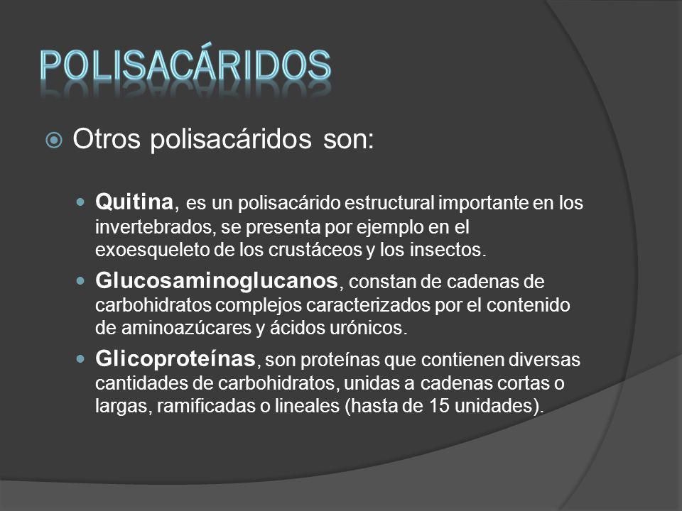 PoliSACÁRIDOS Otros polisacáridos son:
