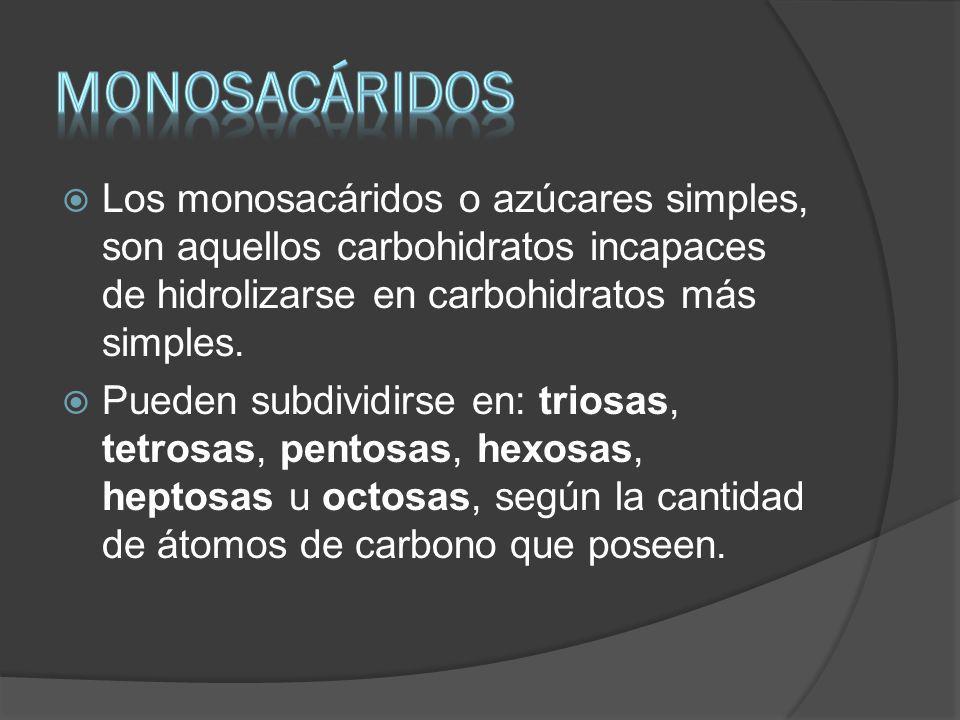 MONOSACÁRIDOS Los monosacáridos o azúcares simples, son aquellos carbohidratos incapaces de hidrolizarse en carbohidratos más simples.