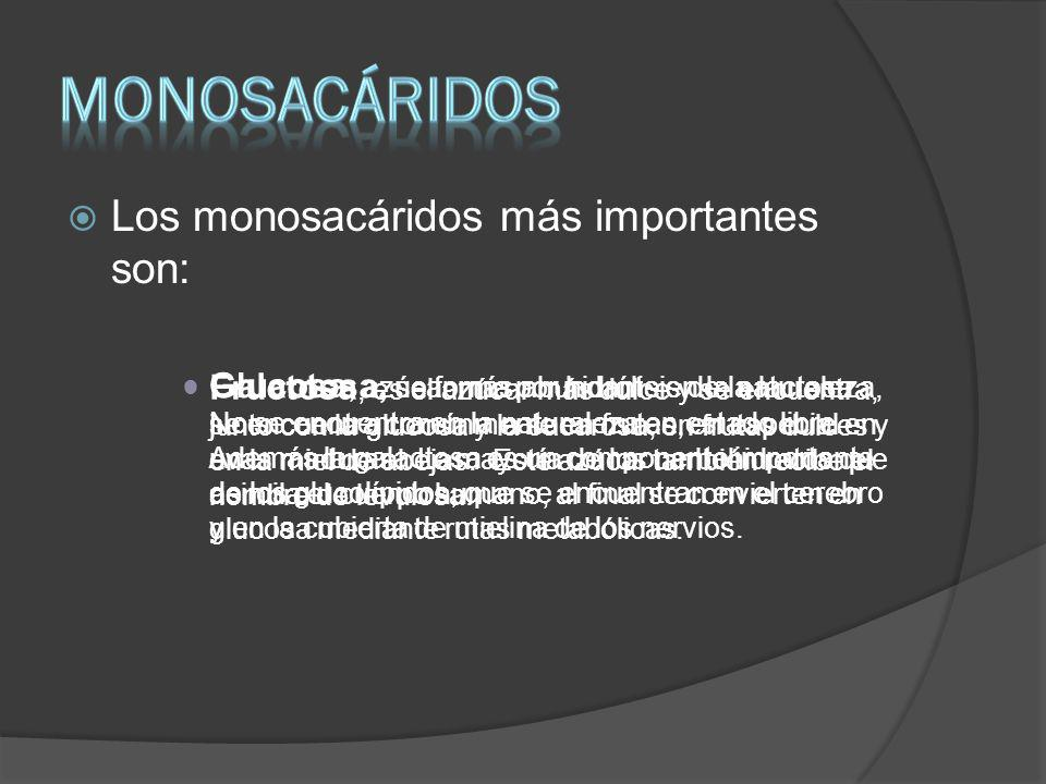 MONOSACÁRIDOS Los monosacáridos más importantes son: