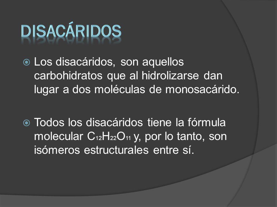 diSACÁRIDOS Los disacáridos, son aquellos carbohidratos que al hidrolizarse dan lugar a dos moléculas de monosacárido.