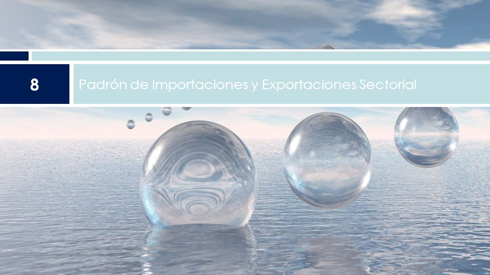 Padrón de Importaciones y Exportaciones Sectorial