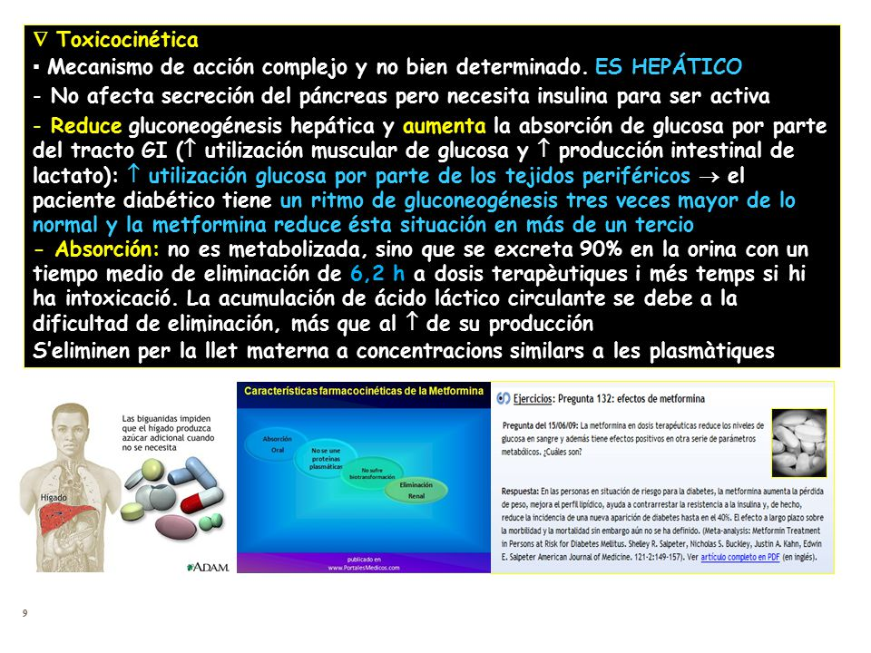  Toxicocinética ▪ Mecanismo de acción complejo y no bien determinado. ES HEPÁTICO.