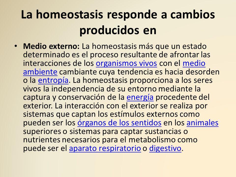 La homeostasis responde a cambios producidos en