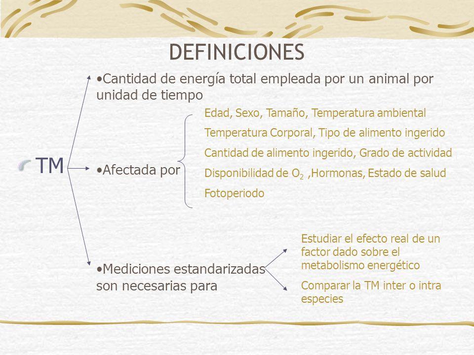 DEFINICIONES Cantidad de energía total empleada por un animal por unidad de tiempo. Afectada por.