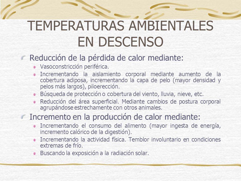 TEMPERATURAS AMBIENTALES EN DESCENSO