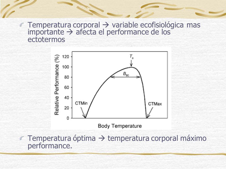 Temperatura corporal  variable ecofisiológica mas importante  afecta el performance de los ectotermos