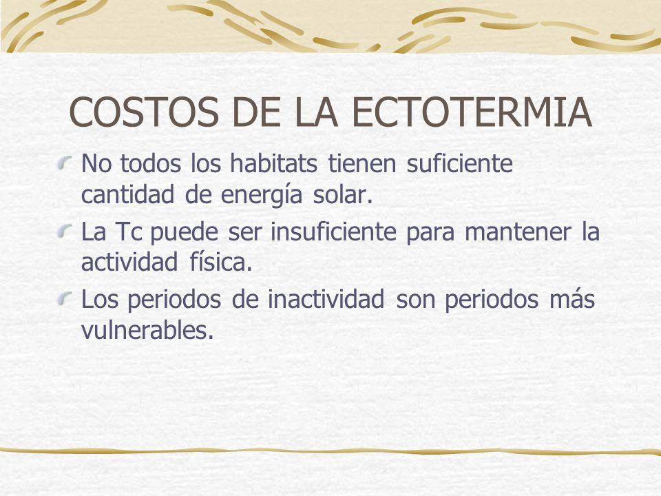 COSTOS DE LA ECTOTERMIA