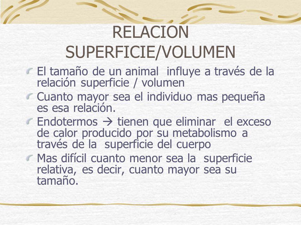 RELACION SUPERFICIE/VOLUMEN