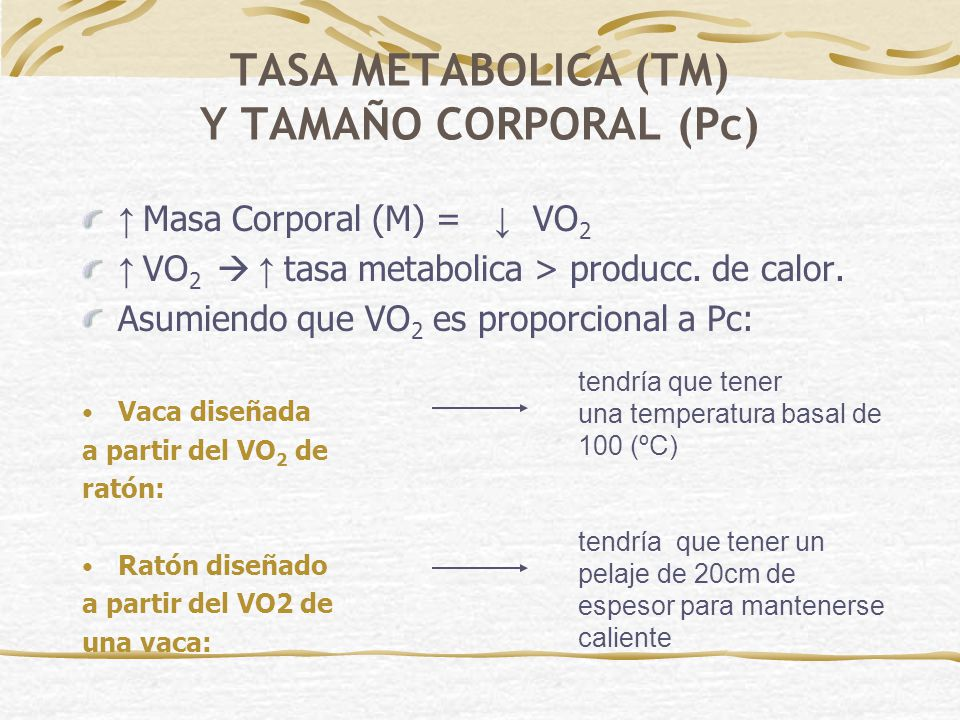 TASA METABOLICA (TM) Y TAMAÑO CORPORAL (Pc)
